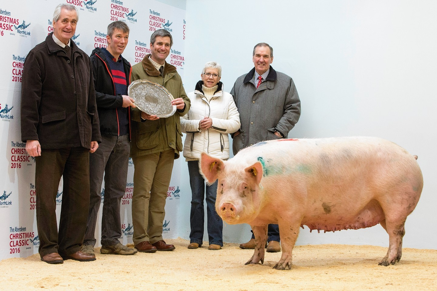 Joe Cheale, Mark Strachan, Adam Cheale, Jenny Elrick from ANM and Edward Johnston from Cheale Meats.
