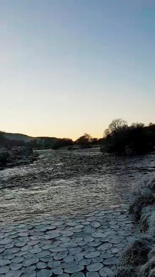Rare ice pancakes on River Helmsdale at Helmsdale Strath in Sutherland by amatuer photographer Dan McLeod.