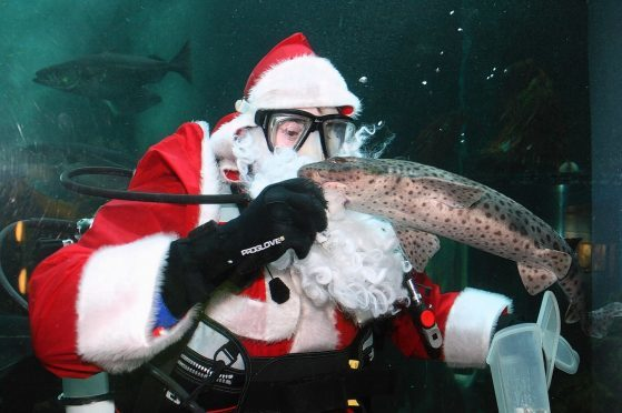 Santa's set for another underwater visit to the north-east.