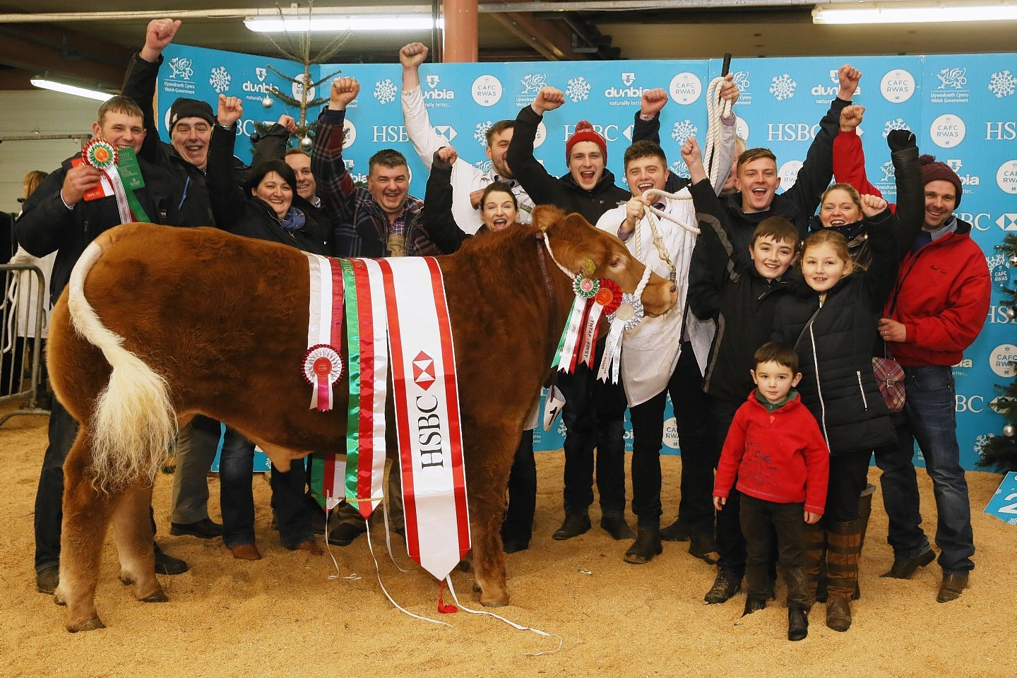 Scottish exhibitors at the Welsh Winter Fair celebrate Tip Top's win.