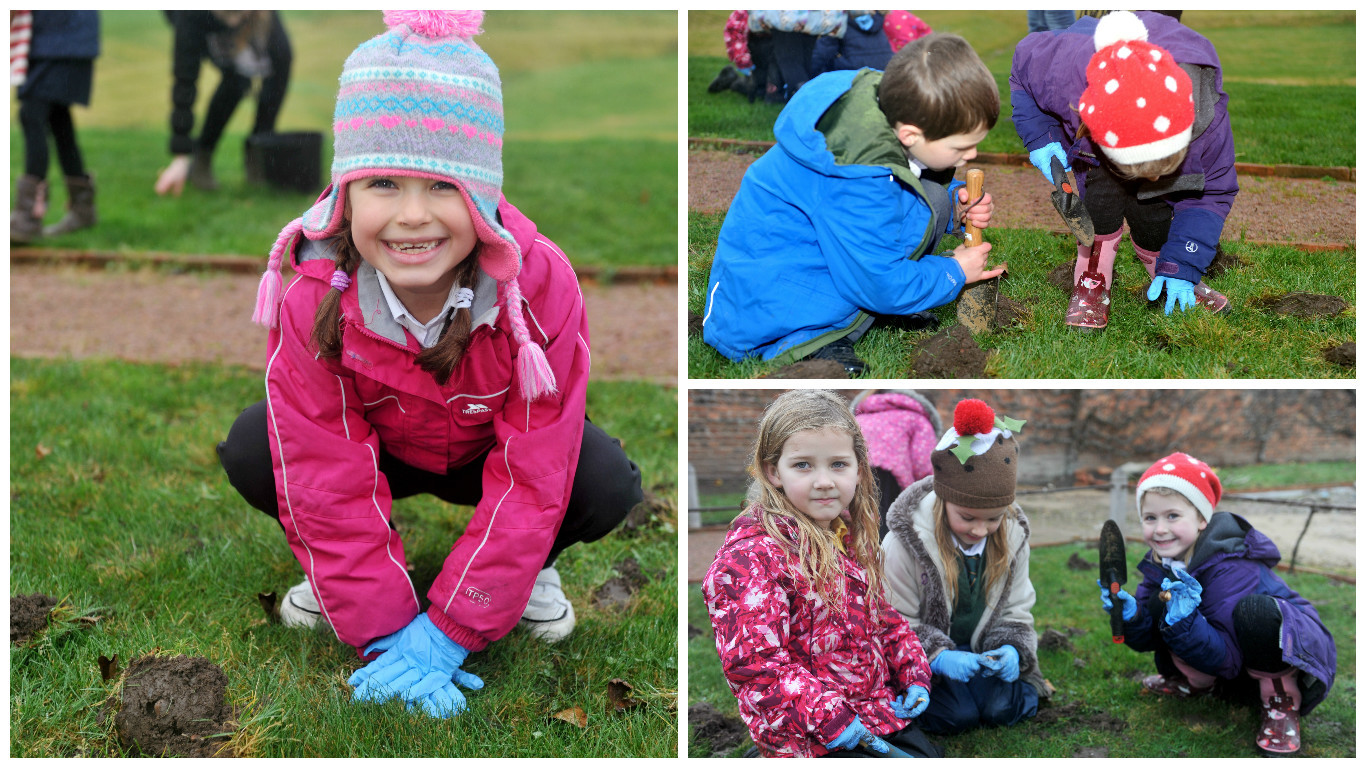 Pupils from Milne's Primary School in Fochabers visited Gordon Castle, on the outskirts of the village, yesterday to hone their gardening skills. Pics by Gordon Lennox