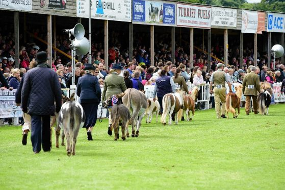 The two-day show attracts more than 30,000 visitors every year.