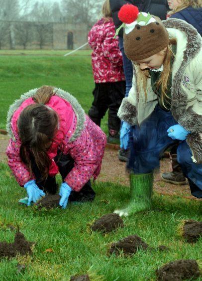 Neve Lunnon-Wood, left, and Isla Hay, right, carefully plant their bulbs.