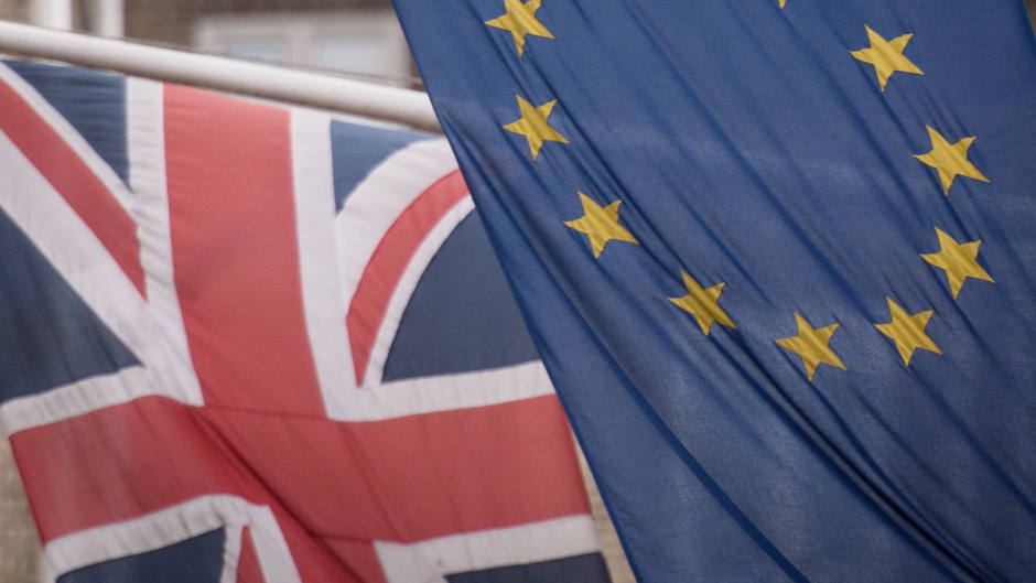 A survey has found MPs largely expected Remain to win.