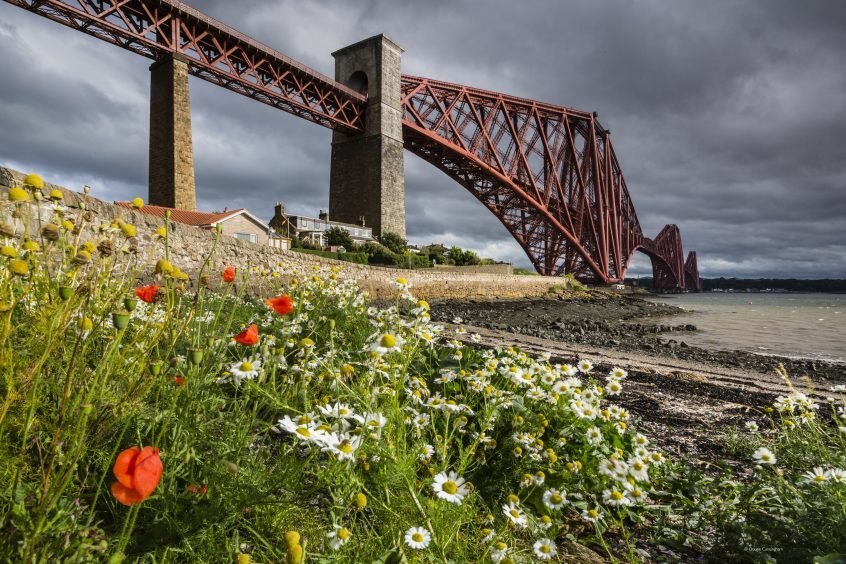 The Forth Bridge by Dougie Cunningham