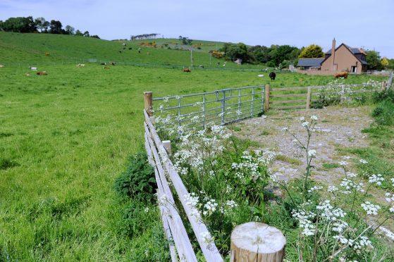The Greenside site at Rosemarkie