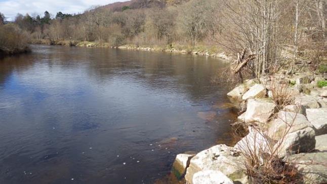 The River Spey near Aviemore
