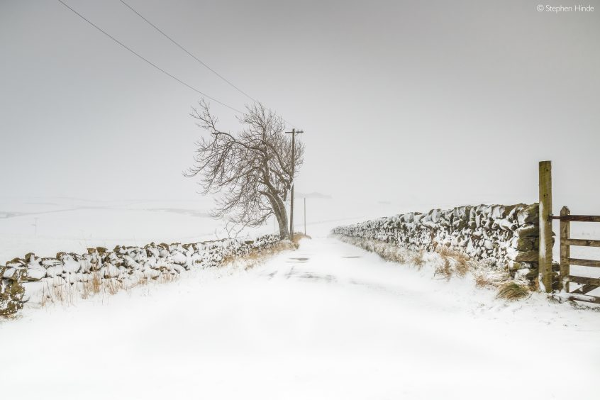 Bleak Midwinter, Howgate, by Stephen Hinde