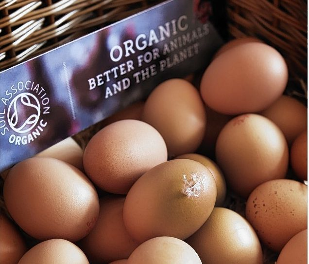 Almost 1.2 million acres of land was farmed organically in the UK last year, according to Defra.
