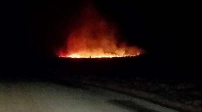 Clashendarroch Forest, Rhynie fire last night. Picture by Deborah Smith