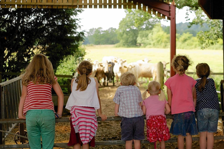 This year's Open Farm Sunday runs on June 10