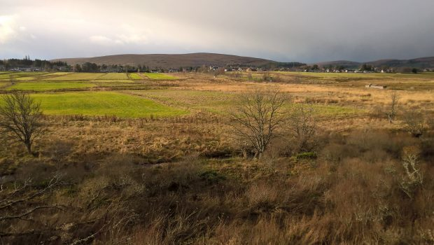 Wetlands near Tomintoul have become synonymous with the sights and sounds of wading birds.