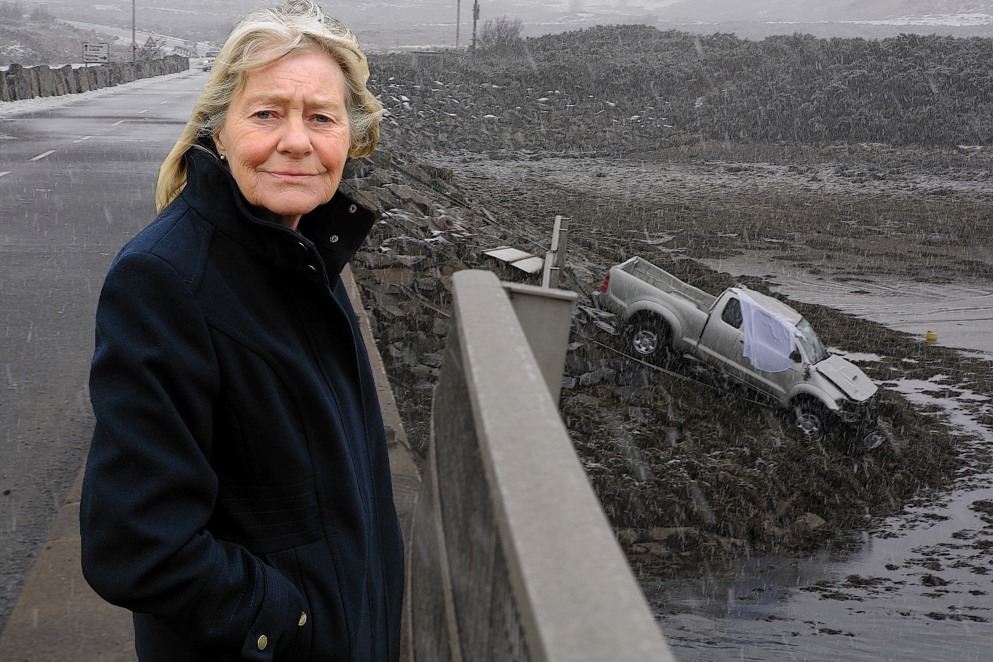 David Bowes' partner Anne Scott is horrified at the prospect of the council appealing the case