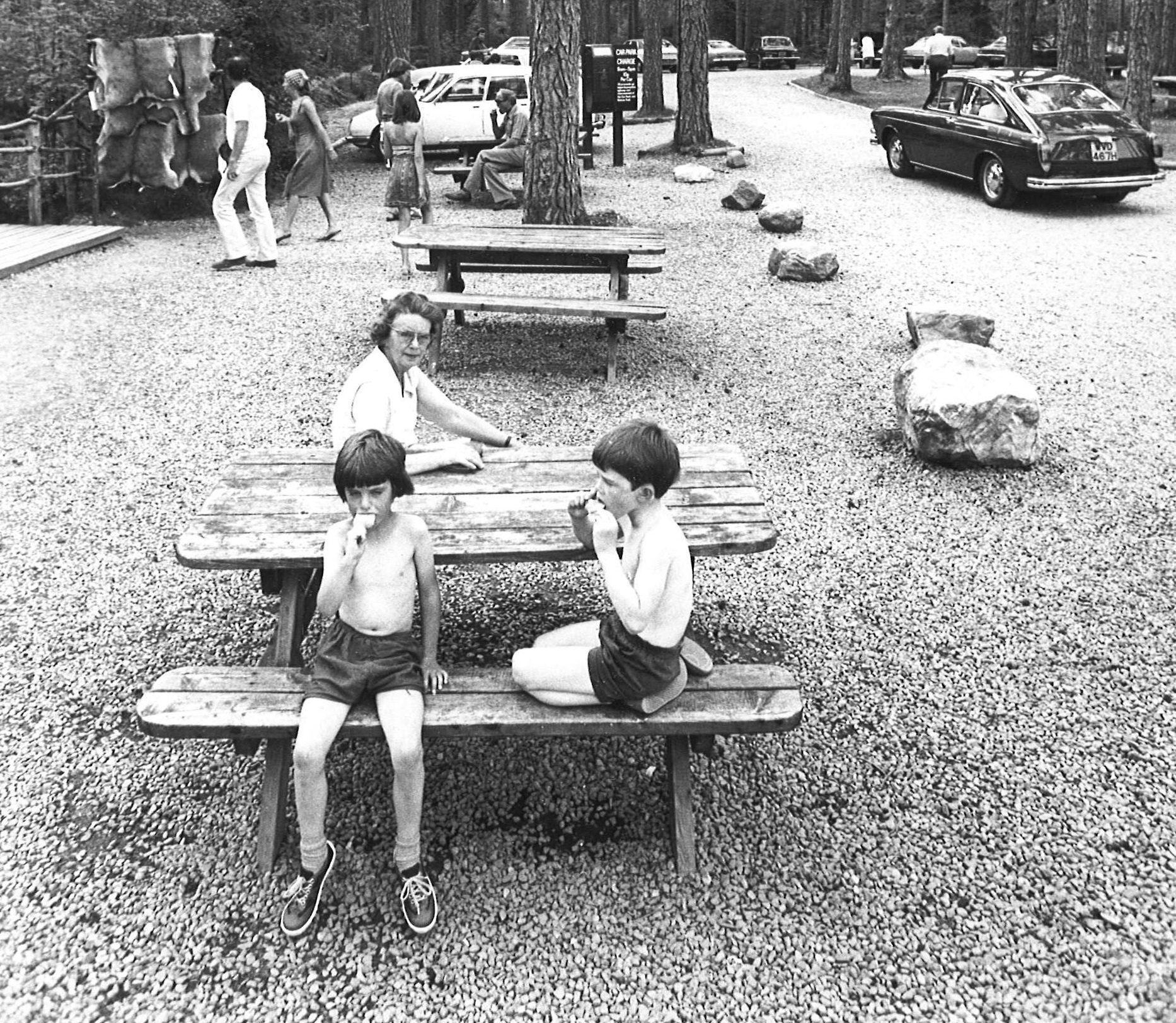 Kids enjoying a picnic at Landmark, 1977