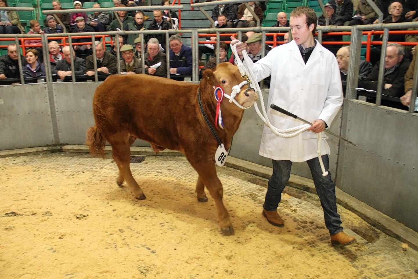 Mark Robertson, pictured, will judge the Huntly show.