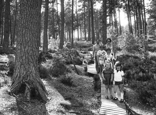 A family enjoythe  nature trail at Landmark, 1977