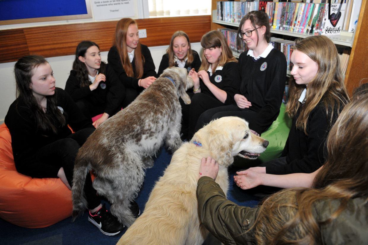 Speyside High School pupils work out their exam stress by playing with Barney and Brodie.