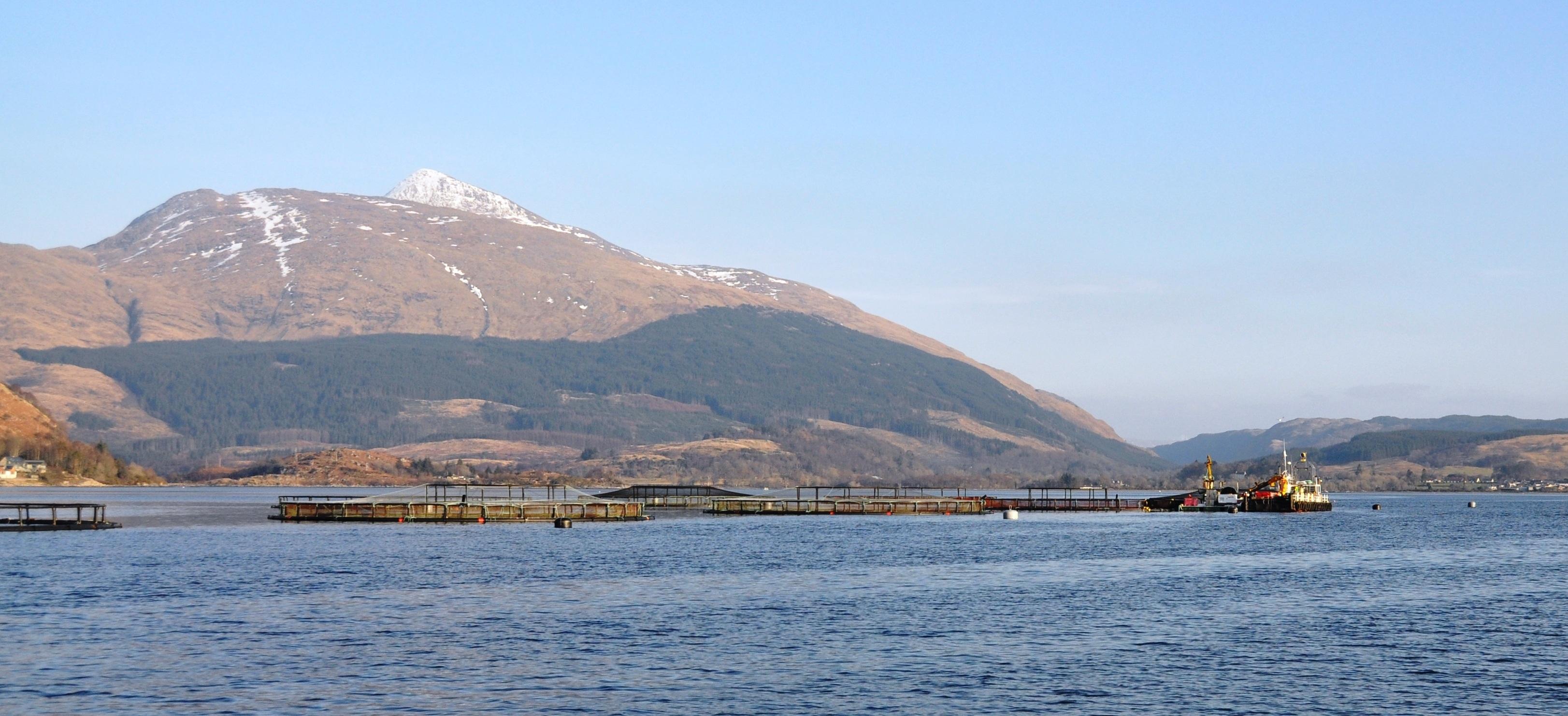 Dawnfresh trout farming operations on Loch Etive.