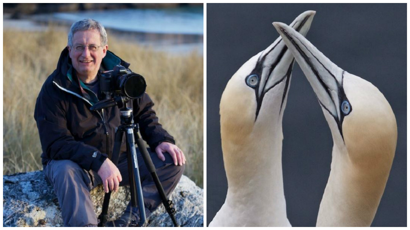 Andy Hall and his photograph of Billing Gannets at Troup Head
