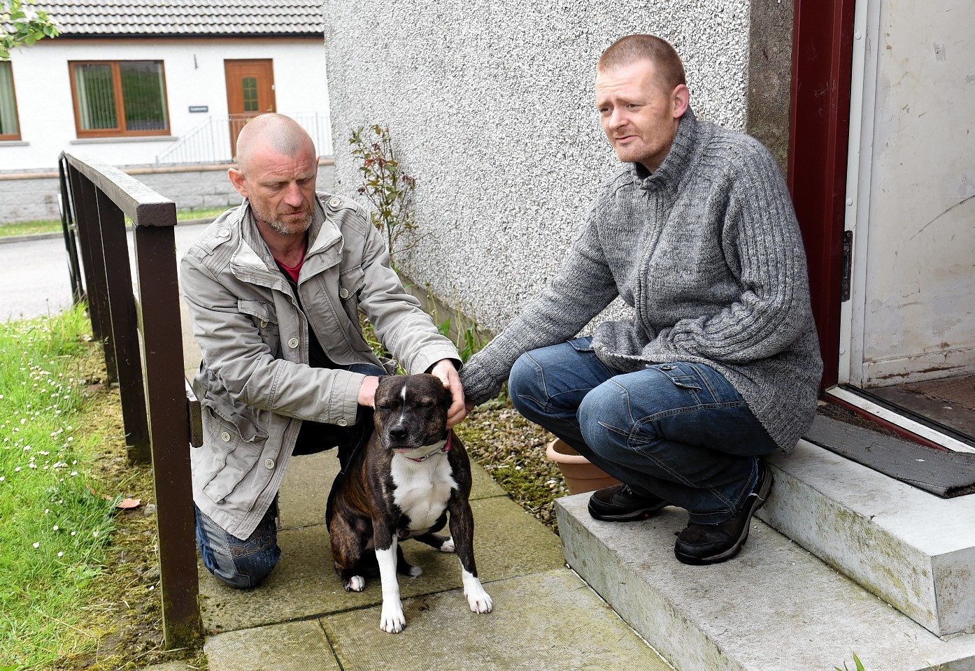 Pictured, from left, Alexander Bain and Brian Cowie with the rescued dog Levi.