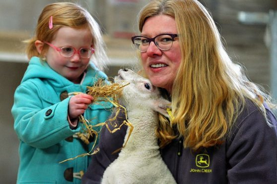Violet Cheesman, 3, feeds a lamb with farm owner Louise Nicoll.