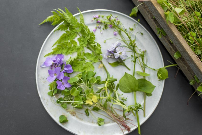 Now is the time to make the most of fresh seasonal herbs, says Michelin star chef Tom Kitchin