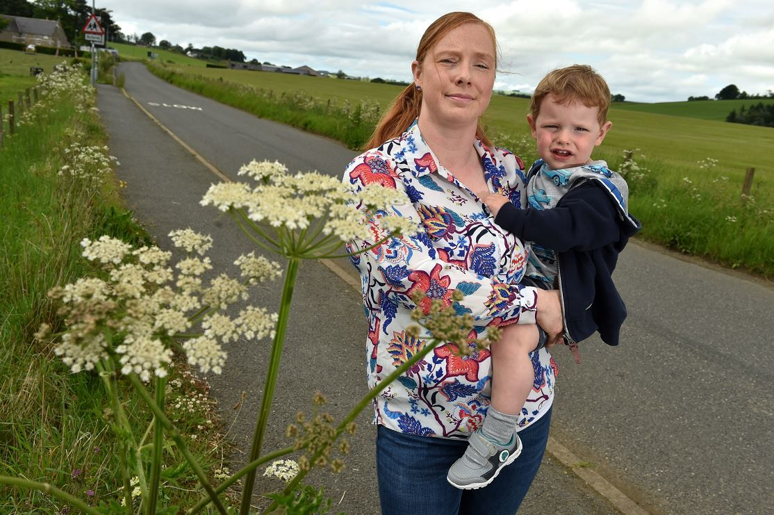 Claire McPherson and son Jake, 2, next to a giant hogweed near Logie Durno School (Picture: Kenny Elrick)