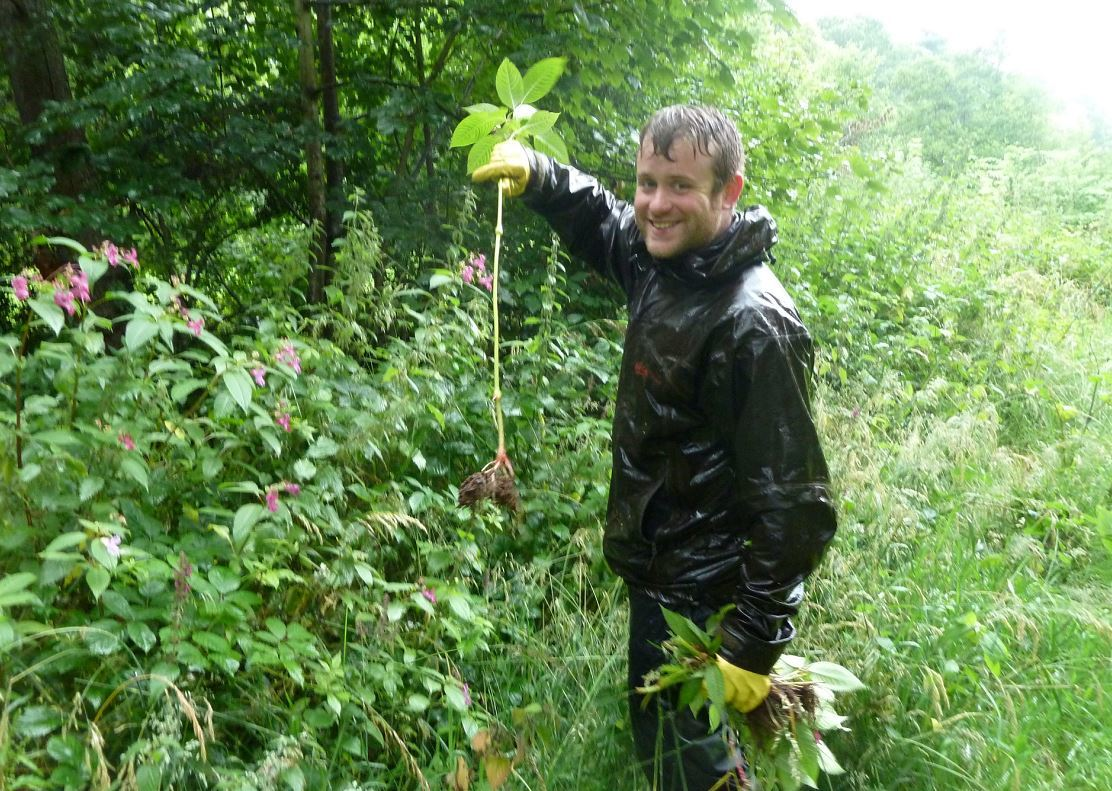 Wild Things volunteers have devoted more than 600 hours to clearing hazardous plants from Forres.
