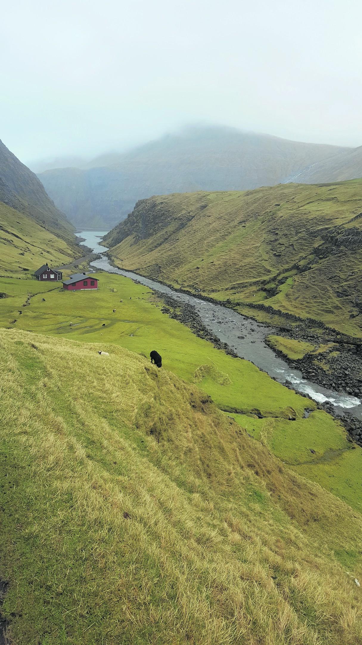 yl-Faroes4