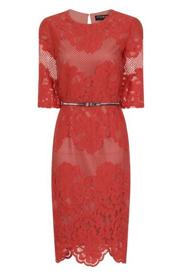 Little Mistress Terracotta Multi Lace Dress, currently reduced to £32.50 from £65 (www.little-mistress.com)