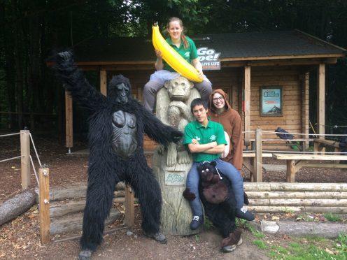 The Go Ape runners - left to right: John Black in gorilla suit, Pauline Anderson (holding banana), Ewen Kerridge and Bethany Tennant.