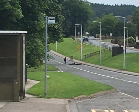 The shocking photo apparently shows two youngsters stretched out across one lane of General Booth Road - while a third stands next to them.