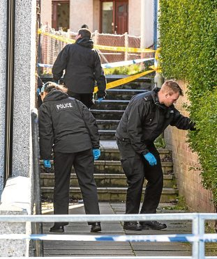Police search the lanes around the scene of the crime