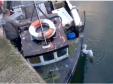 Mike Duncan rescued the bird at Boddam harbour. Video: Brian Park