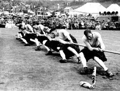 A team get the winning pull at the tug-of-war event in 1954.
