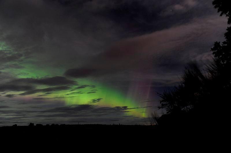 Moray by Steve Arkley