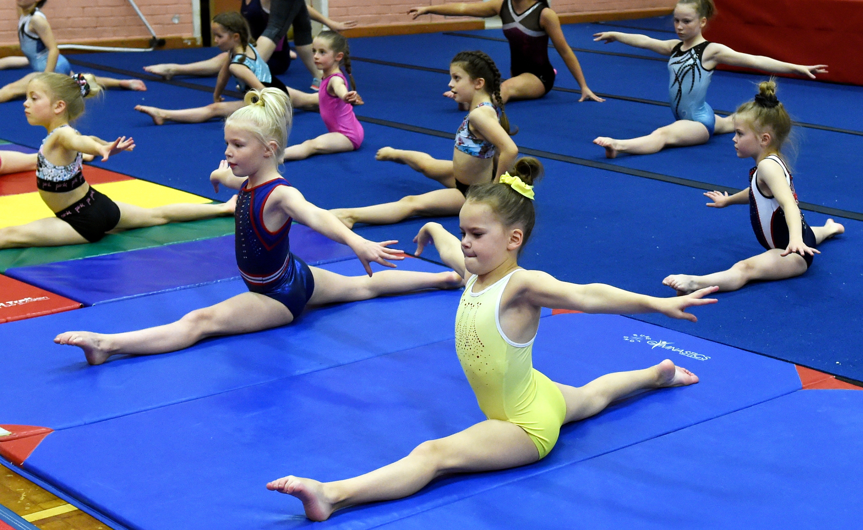 The Garioch Gymnastics club are trying to open their own premises. Picture by Jim Irvine