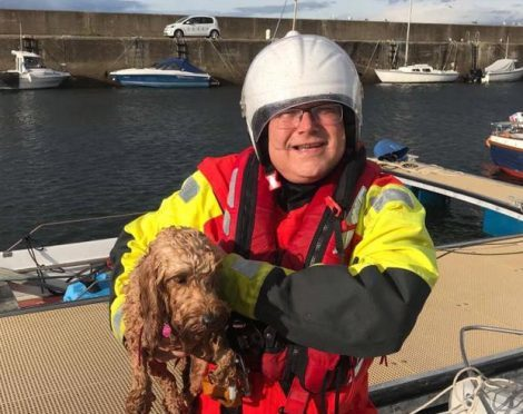 Miro crew member Peter McKenzie with the rescued dog at Hopeman harbour.