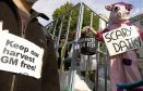 A protester dressed as a cow joins campaigners against genetically modified crops outside Downing Street, London