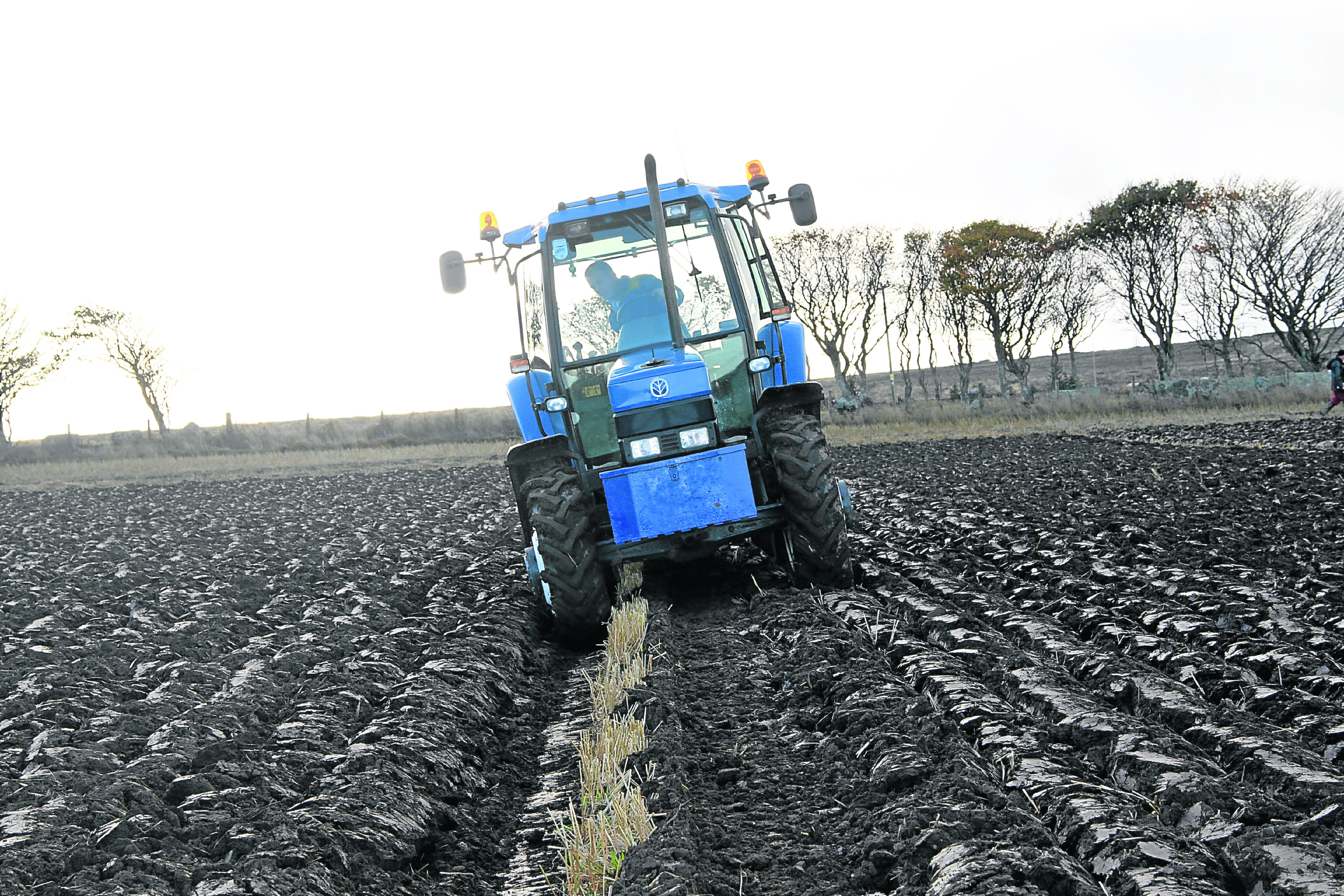 Gavin Robertson, Barrock driving a New Holland 7740 tractor with a 2 furrow reversible Keverneland  plough on his way to scooping the Champion of the field at the annual North and West Caithness Ploughing Association match held at Stanstill Farm Bower.