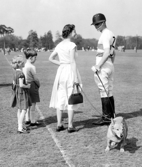 Queen Elizabeth II holds one of the Royal corgis while she speaks to the Duke of Edinburgh as he plays polo. May 1956.