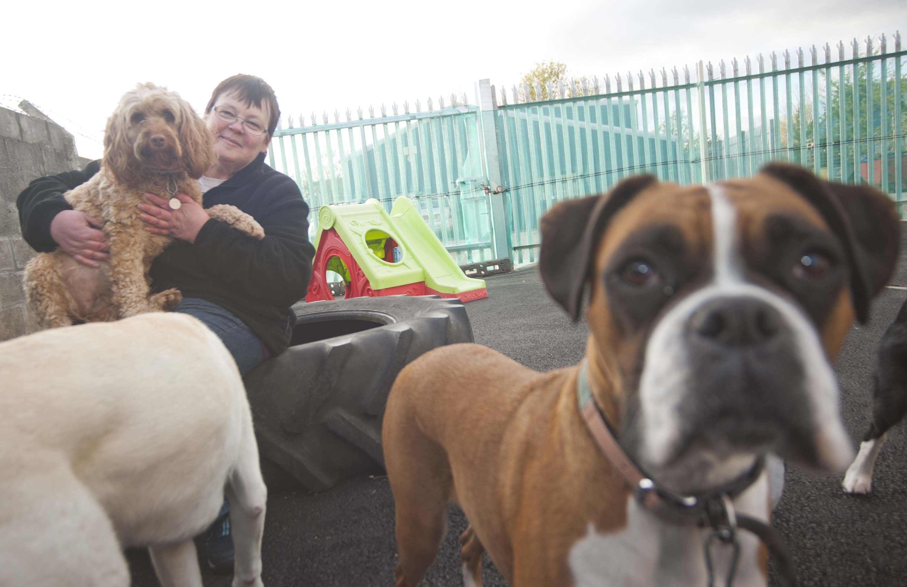 Esther Riddell, owner of Moray Mutts, has been searching for a new home for her firm for a year.