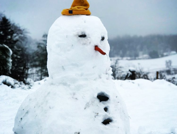 Strathdon experienced around 13cm of snow. Photo Andrew Brown.
