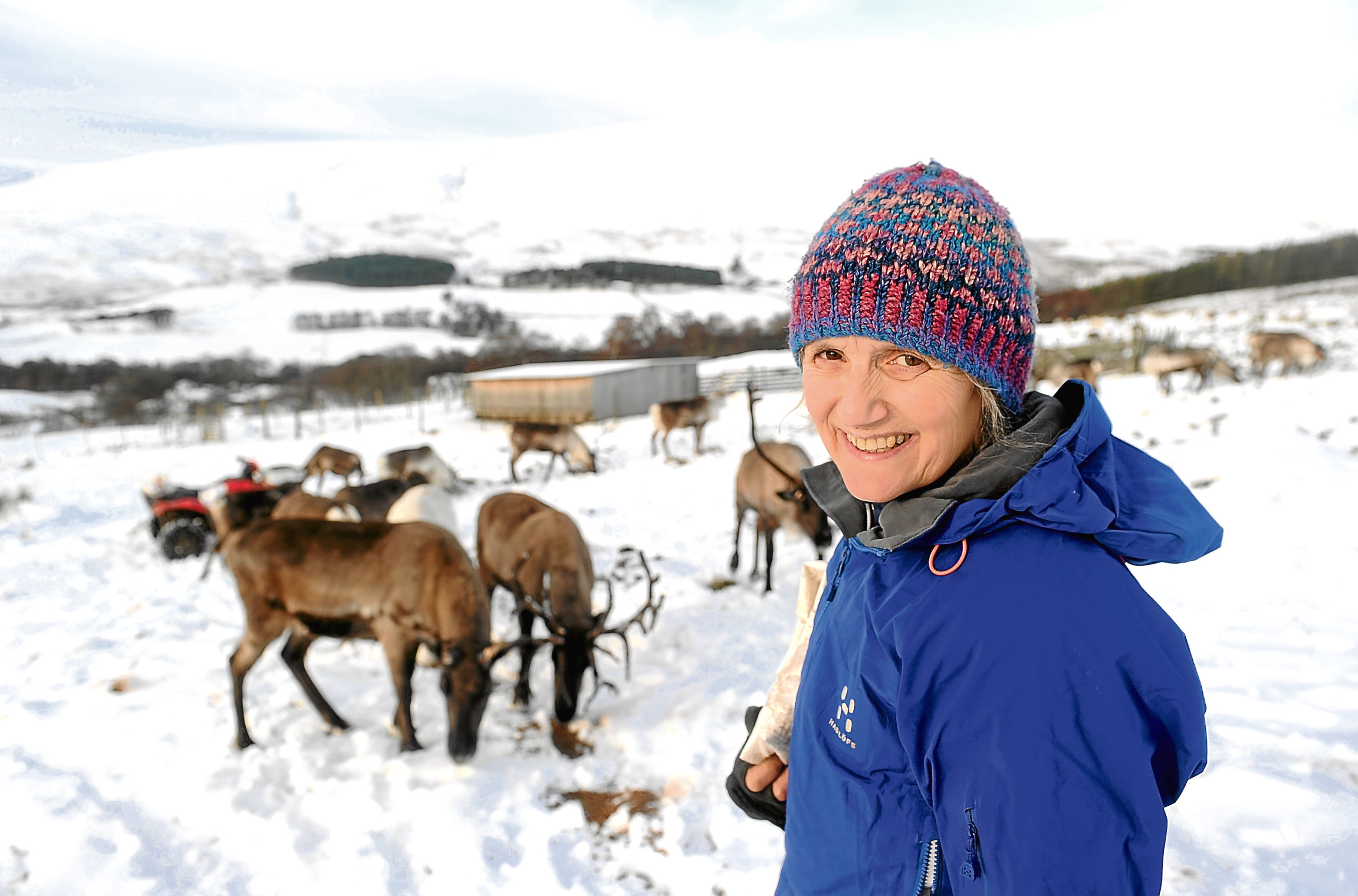 Tilly Smith with some of the reindeer