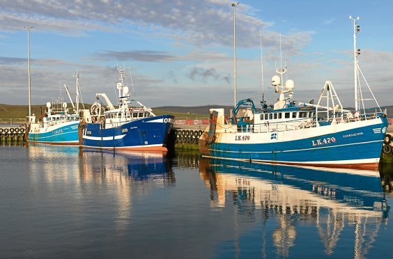 Fishing boats tied up at Lerwick harbour