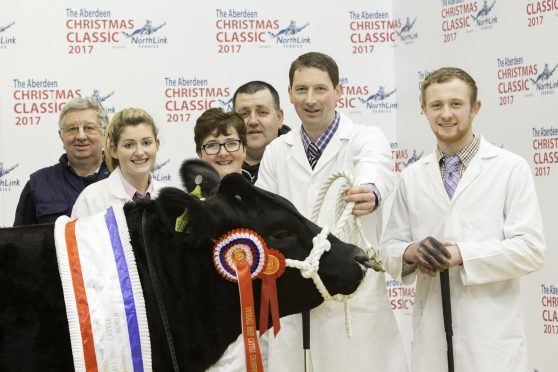 Harry Brown with his family and helpers, with his prime cattle champion.