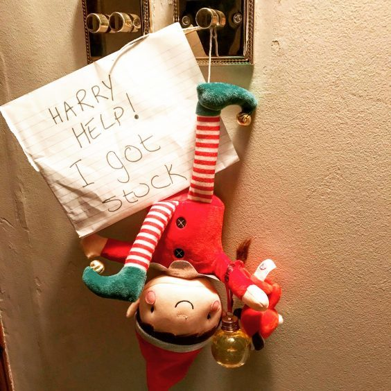 Harry Howarth, age 6 from Udny Green is on hand to help his elf