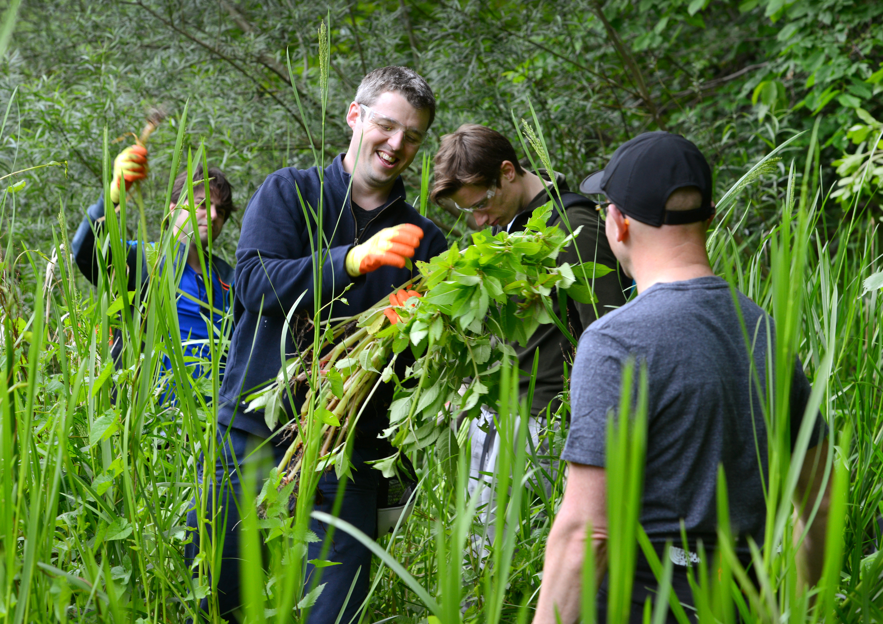 The River Dee Trust has taken action against the invasive plants
