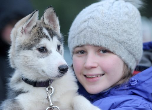 Jessica Wright of Linconshire with her eleven week old pup, 'Delta' on its first outing. Pictures by Sandy McCook