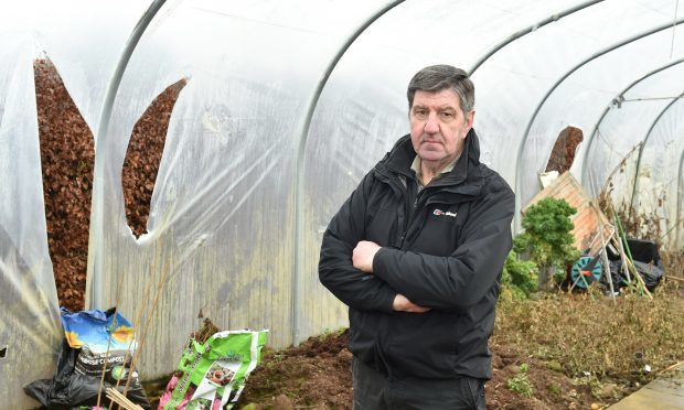 Inverurie Men's Shed was once again vandalised. Alistair Smith surveys the polytunnel which will cost around £1000 to replace. (Picture by Colin Rennie)